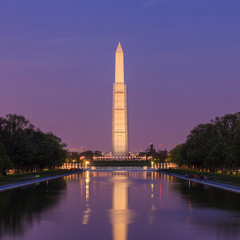 Wall Mural - Washington Monument