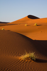 Sossusvlei dune during sunrise, Namibia