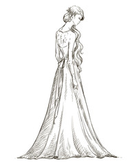 Beautiful girl with long hair. Bride. Bridal dress. vector.