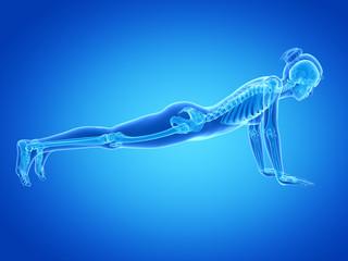 medical 3d illustration - woman doing pushups