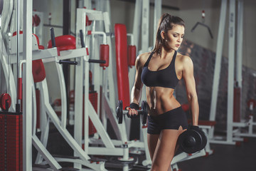 Wall Mural - Sexy sporty girl with dumbbells workout in the gym