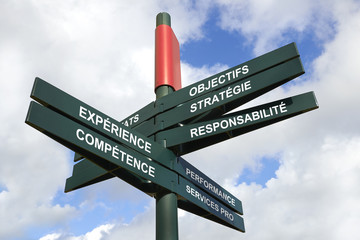 competences or job skill can make you expert professional -Frenc