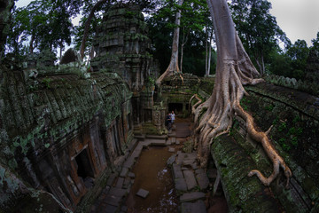 Ta Prom Temple at Siem Reap, Cambodia