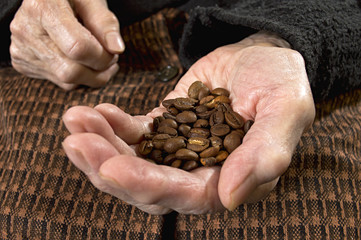 Fresh roasted coffee beans in old hand.