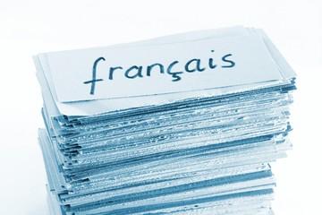 french (=francais) flash cards / vocabulary cards