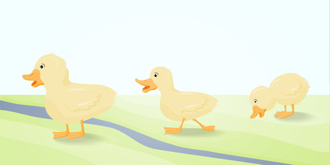 The illustration  three cute duckling.