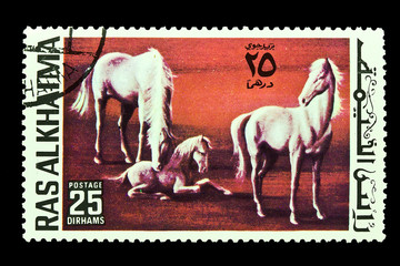 Postage stamps Horses
