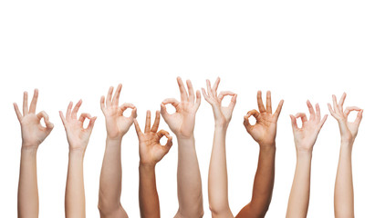 human hands showing ok sign
