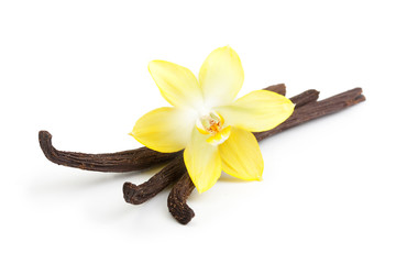 Foto op Textielframe Orchidee Vanilla pods and orchid flower isolated on white background