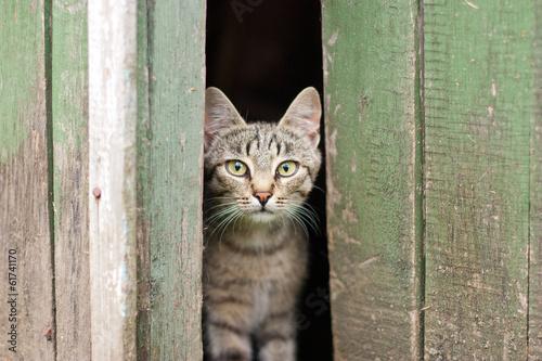 cat training centres in hyderabad