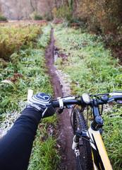 Mountain bike in a trail