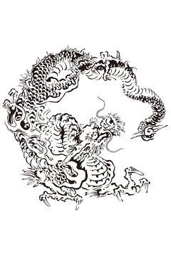 妙心寺 雲龍図 八方にらみの龍のイメージイラスト