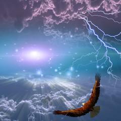 Wall Mural - Eagle in flight beneath storm