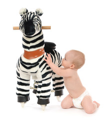 child baby toddler play with big zebra horse toy