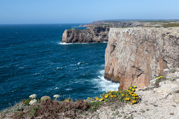Wall Mural - Rocky Coast of Portugal near Sagres