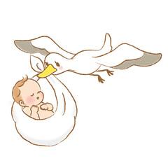 こうのとりと赤ちゃん