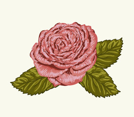 Beautiful rose bud with leaves painted in watercolor style