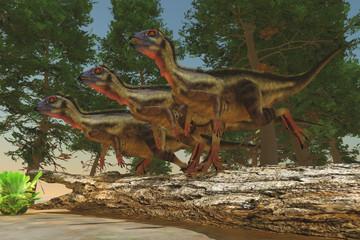 Hypsilophodon Dinosaurs