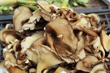 fresh mushrooms in the market