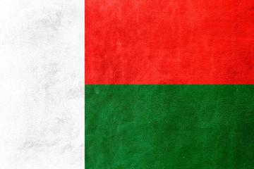 Madagascar Flag painted on leather texture