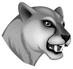 A grey panther