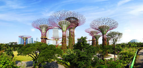 Poster de jardin Singapoure Gardens by the Bay. Singapore
