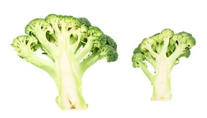 Green broccoli sliced in cutaway isolated