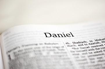 Book of Daniel Wall mural
