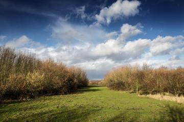 pictoresque landscape