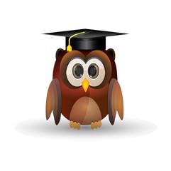 Owl graduation cap