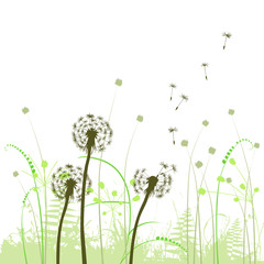 abstract background with dandelions