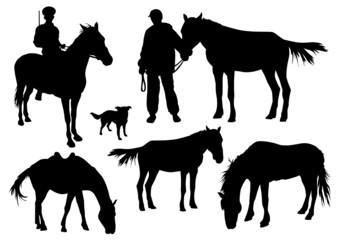 horses set