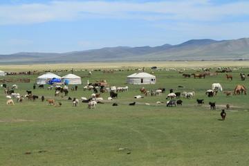 Jurten in der mongolischen Steppe