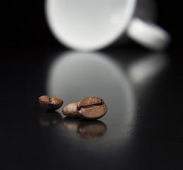 bean concept