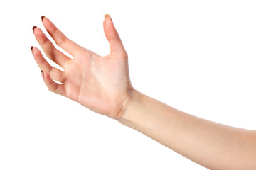 Female hand reaching for something on white