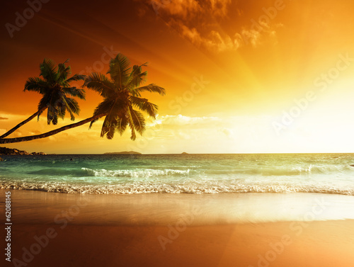 Wall mural sunset on the beach of caribbean sea