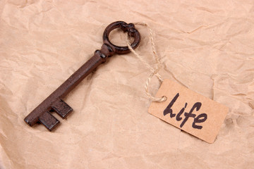 Key to life. Conceptual photo. On color background