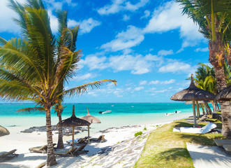 rocky beach of mauritius with palm trees and deckchairs