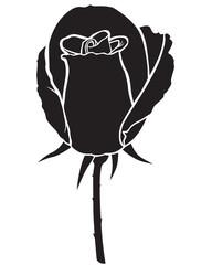 Silhouette rose bud