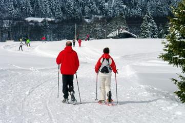 randonneé en raquette a neige