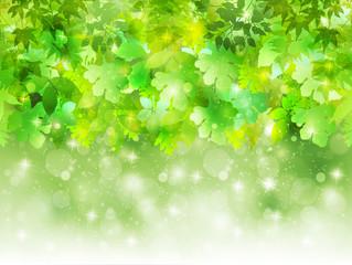 葉 植物 背景