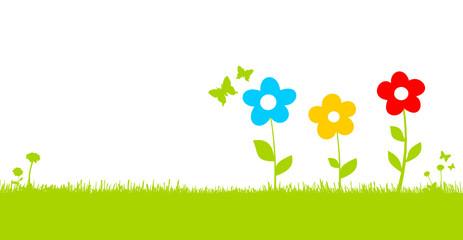 Bunte Blumen auf Wiese