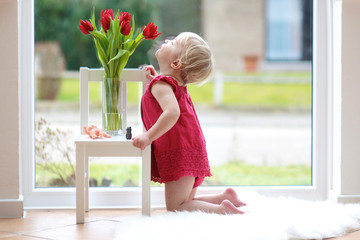 Pretty blonde toddler girl smelling beautiful tulips at home