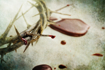 Blood and Thorns
