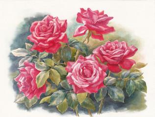 Цветы акварелью, пять алых роз.