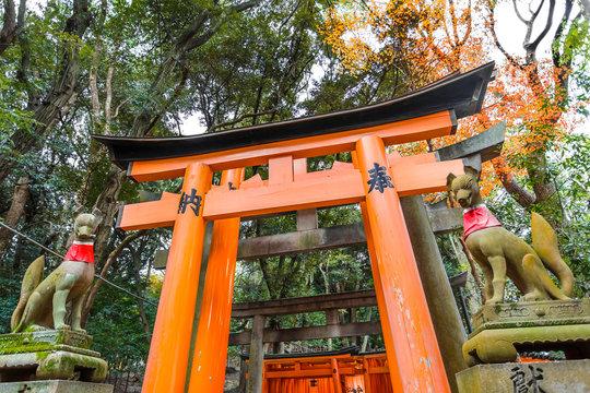 Torii at Fushimi Inari shrine in Kyoto