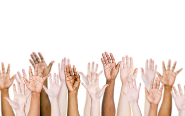 Group of Multiethnic World People's Arms Raised