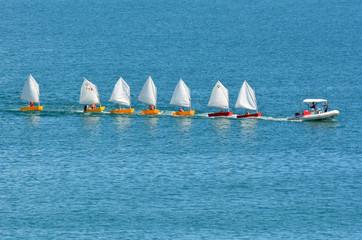 Garden Poster Water Motor sports Small sailing boats