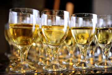 Closeup of glasses of white wine in a row on a table