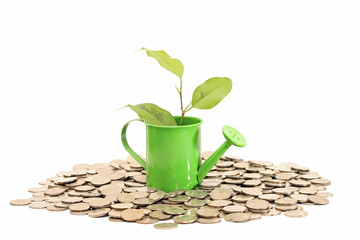 Plant grows from watering can with coins